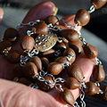 02014 Ein beskidischer Pimpernuß-Rosenkranz gekettelt. Foto von Silar..JPG