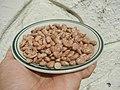 0682Pinto bean textures 19.jpg