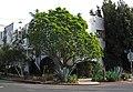 1200-1202 S Highland, LA.jpg