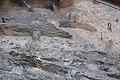 14-11-15-Ausgrabungen-Schweriner-Schlosz-RalfR-103-N3S 4086.jpg