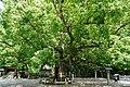 140712 Oasahiko-jinja Naruto Tokushima pref Japan12s3.jpg