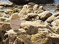 16-05-2017 Balancing Stones on Praia da Balbina (6).JPG