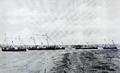 1902 - Nave ale Diviziei de Dunare.png