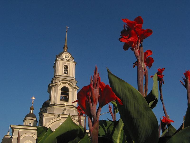 File:2005. Донецк 193.jpg