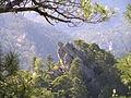 2005 Fresneda de la Sierra Cuenca-Alto de la fuente del espino-Fuertescusa ED-50-UTM-USO 30 X-575838 Y-4476092.jpg