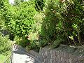 2008 07 Botanical Garden Meran 70500R0179.jpg