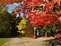 2011-10-28-141752 49,418805, 8,674650.JPG - panoramio.jpg