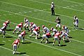 2013 Alabama A-Day spring football game.jpg