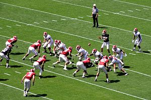2013 Alabama Crimson Tide football team - AJ McCarron takes a snap for the White team at the A-Day Game.