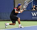 2013 US Open (Tennis) - Qualifying Round - Go Soeda (9777117762).jpg