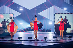 20150305 Hannover ESC Unser Song Fuer Oesterreich Laing 0031.jpg