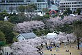 20160403 Himeji-Castle 3347 (26791567666).jpg