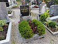 2017-10-18 (369) Friedhof Plankenstein.jpg