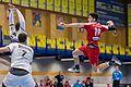 20170114 Handball AUT SUI 6252.jpg