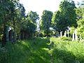 2017 Zentralfriedhof, Vienna 22.jpg