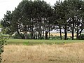 2018-07-18 Mundesley golf course (3).JPG
