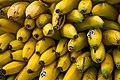 2019 Bananas (48608666327).jpg