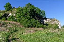 20200521 Skała Okrążek w Piekarach, widok z południowego zachodu 1711 0066.jpg