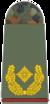311-Brigadegeneral.png
