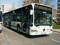378 ETG - Flickr - antoniovera1.jpg