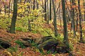 3 Ponds Trail (6) (15018234913).jpg