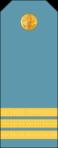 4.LPLAAF-SGT.png