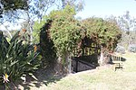 493 - Macquarie Grove (5045549b6).jpg