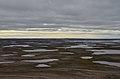 ABoVE surveys boreal landscapes (50912256092).jpg