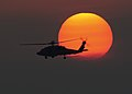 A Sea Hawk helicopter at sunset. (8701366289).jpg