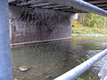 A bridge over the Humber River, viewed through a spider web.jpg