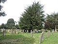 A guided tour of Broadwater ^ Worthing Cemetery (19) - geograph.org.uk - 2337753.jpg
