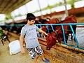 Aahan Farm Meerut.jpg
