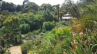 Abbotsbury Subtropical Gardens 08.jpg