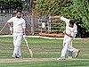 Abridge CC v Hadley Wood Green Sports CC at Abridge, Essex, England. Canon 66.jpg