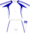 Adidas generic whiteblue kit 2008.svg