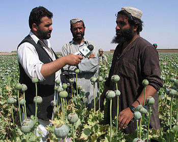 English: VOA reporter interviewing Afghan popp...