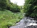 Afon Camddwr near Soar y Mynydd (looking downstream) - geograph.org.uk - 510558.jpg