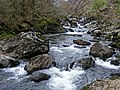 Afon Glaslyn - geograph.org.uk - 1382152.jpg