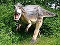 Albertosaurus Modell.JPG