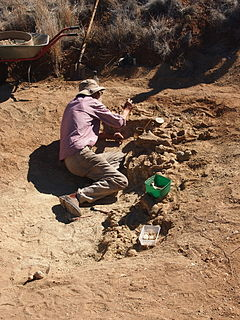 Alcoota paleontological site in the Northern Territory of Australia