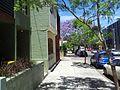 Alexandria NSW 2015, Australia - panoramio (241).jpg