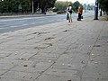 Alians PL PrzystanekParkBronowice,Lublin 23 08 2008,P8230061.jpg