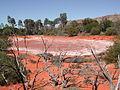 Alice Springs Desert Park.JPG