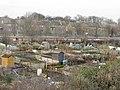 Allotments near Joppa - geograph.org.uk - 1168529.jpg