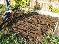 Alta-new-soil.JPG