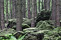 Altburgbachtal im Naturschutzgebiet Schönecker Schweiz Kreis Bitburg,Prüm 03.jpg