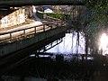 Alte Schwingeböschung unter der Brücke (2008-01) - panoramio.jpg