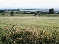 Alton Lane view across fields to Brownhills Lane - geograph.org.uk - 405001.jpg