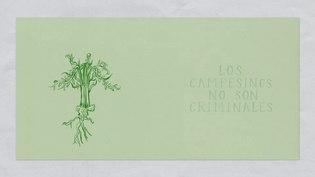 File:Amapola- Los campesinos no son criminales..webm