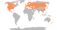 Global range (native and introduced)